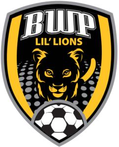Best Youth Soccer Club Albany Saratoga Schenectady